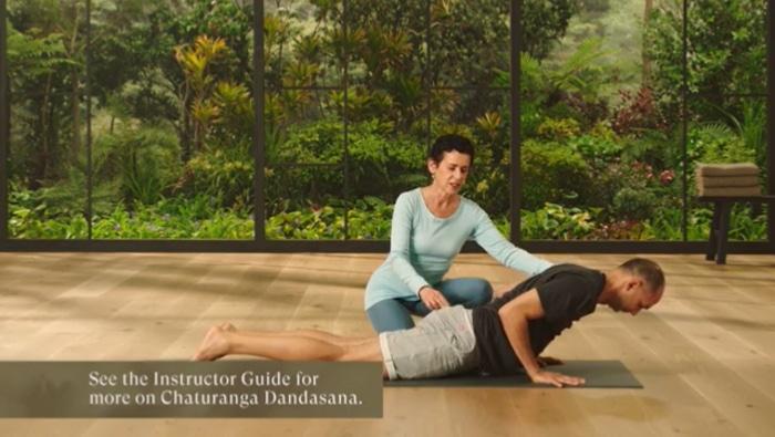 MasterClass on yoga