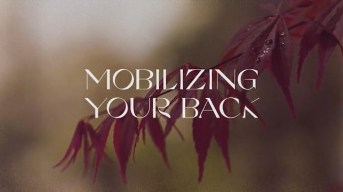 Mobilizing your back