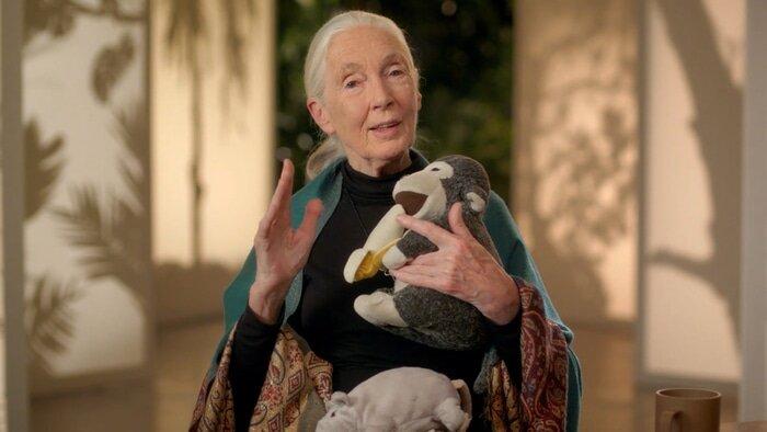 Jane Goodall MasterClass conservation