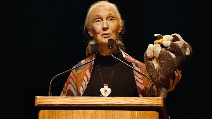 Jane Goodall giving a lecture