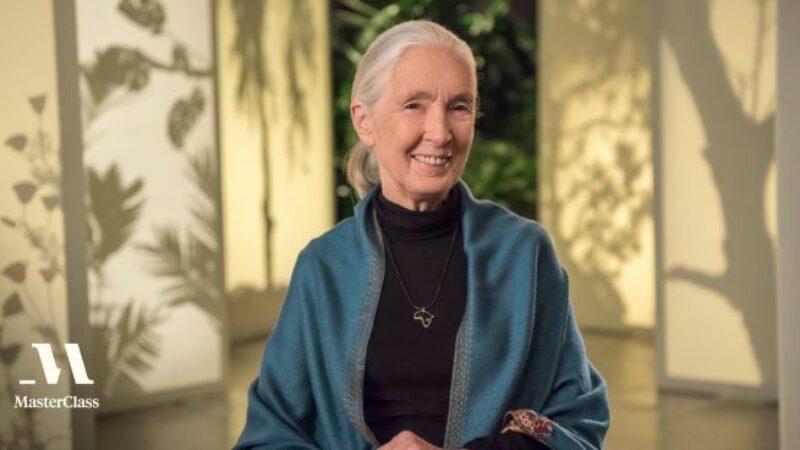 Jane Goodall MasterClass Review