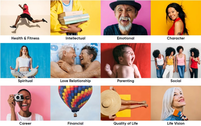 The 12 categories of Lifebook