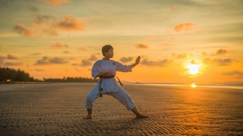 Can you learn martial arts online?