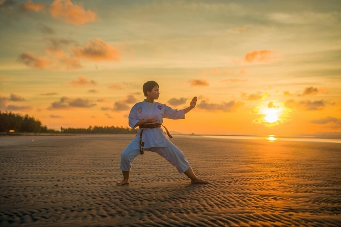 Learn martial arts online