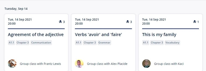 Example Lingoda lessons